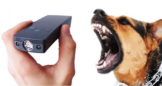Лучшие отпугиватели для собак