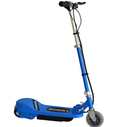 E-Scooter E1013-100