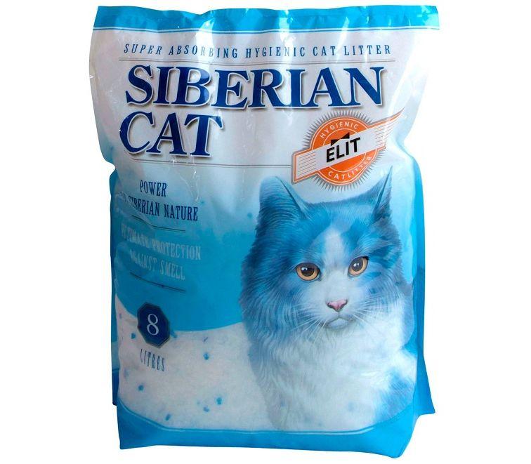 Сибирская кошка Элитный